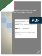 REPORTE PRACTICA 1_DENSIDADD.docx