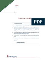 Guia de Actividades.pdf