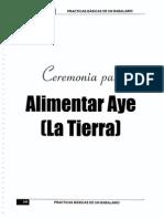 COMIDA AYE.pdf