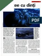 Cetacee cu dinti.pdf