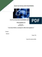 reporte de laboratorio de FQ N°1 (2).doc