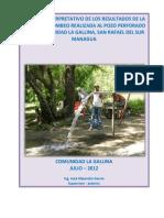Informe Prueba de Bombeo La Gallina.pdf