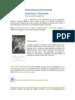 Instrumentos de la Gestión Ambiental (1).pdf