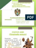 DIAPOSITIVA PLANTAS AROMATICAS.pptx