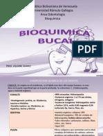bioquimica bucal.pptx
