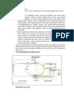 Metabolisme asam urat.docx