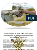 EL AMBIENTE COMO PRINCIPIO FUNDAMENTAL Y COMO DERECHO.docx
