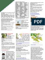 Neem_Brochure.pdf