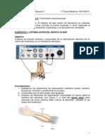 Transmisión neuromuscular.docx