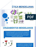Genética Mendeliana.pptx
