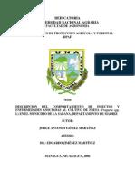 Descripción del comportamiento de plagas y enfermedades asociadas al cultivo de la fresa.pdf