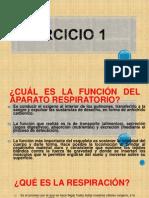Ejercicio 1.ppt