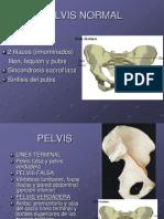 PELVIS NORMA (5) libro botero 7º.ppt