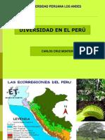 DIVERSIDAD DEL PERÚ.ppt