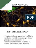 Sistema nervoso.ppt