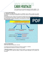 HISTOLOGIA VEGETAL 2013.pdf