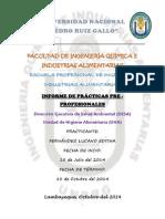 Informe DESA.docx