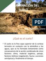 154137862-9-Contaminacion-Suelo.ppt