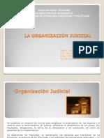 Tarea 6_ Organización Judicial.pdf