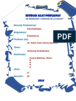 ANATOMÍA ENDODÓNCICA-INFORME.docx