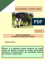 BPGSA.pdf