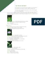 Guía y uso flores de Bach.docx