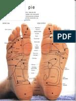 Anon Digitopuntura y Reflexologia Mapas del Pie - yuliatimofti files wordpress com 27 (1).pdf