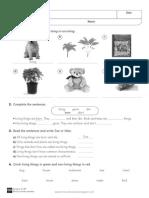 Reinforcement_worksheets_3.pdf
