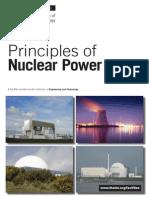 Nuclear Principles