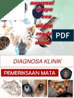 presentasi diagklin