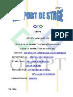 Rapport-Fiduciaire2.docx