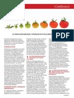 article_theobib.pdf