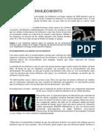 Apuntes_envejecimiento_19-9-09[1].pdf