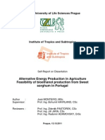 José Monteiro_Self-Report on Dissertation on the Feasibility of bioethanol production from S Sorghum in Portugal_Repositório IPCB.pdf