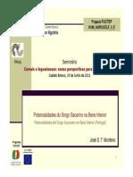 jsmonteiro_sorgo.pdf