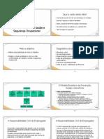 SGSSO.pdf