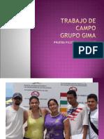 TRABAJO DE CAMPO GRUPO GIMA-12-2007