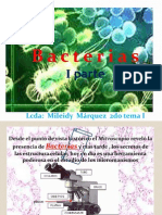 2.1 clase Bacterias.pptx