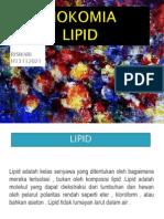 lipid (biokimia).pptx