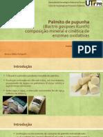 Palmito pupunha.pptx