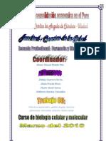 Trabajo colaborativo_equipo de trabajo_S.U.H.A.N.A_SEDE_Chimbote..pdf