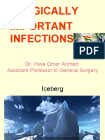 Chronic Infections