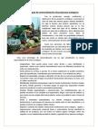 Once estrategias de comercialización de productos ecológicos