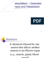 Neuro Transmit Er