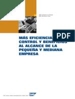Presentacion detallada SAP Business One.pdf