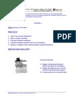 ANTMS0099Y.pdf