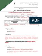 100416-_Formato_preinforme.doc