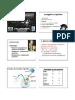 Aula_14-_Analg_sicos_opi_ides.pdf