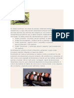 Os Répteis, aves e mamiferos.docx