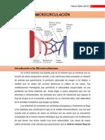 MICROCIRCULACIÒN (LISTA).docx